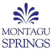montagu-springs_logo_